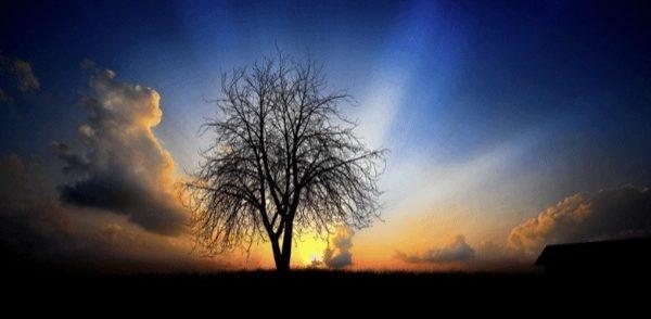 早起きすると人生が変わる!朝の目覚めで1日を変える15の方法