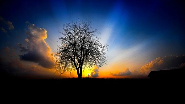 明日から実践、早起きは三文の徳・あなたの人生を変える9つの法則
