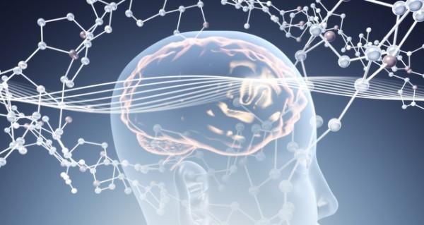 脳内麻薬を有効活用!仕事で成功する為の5つの秘訣